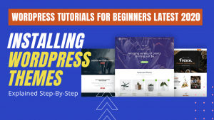 How to Install WordPress Themes for Beginners?