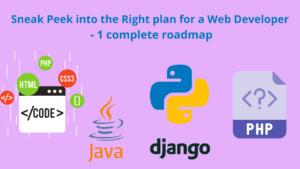 plan for a web developer